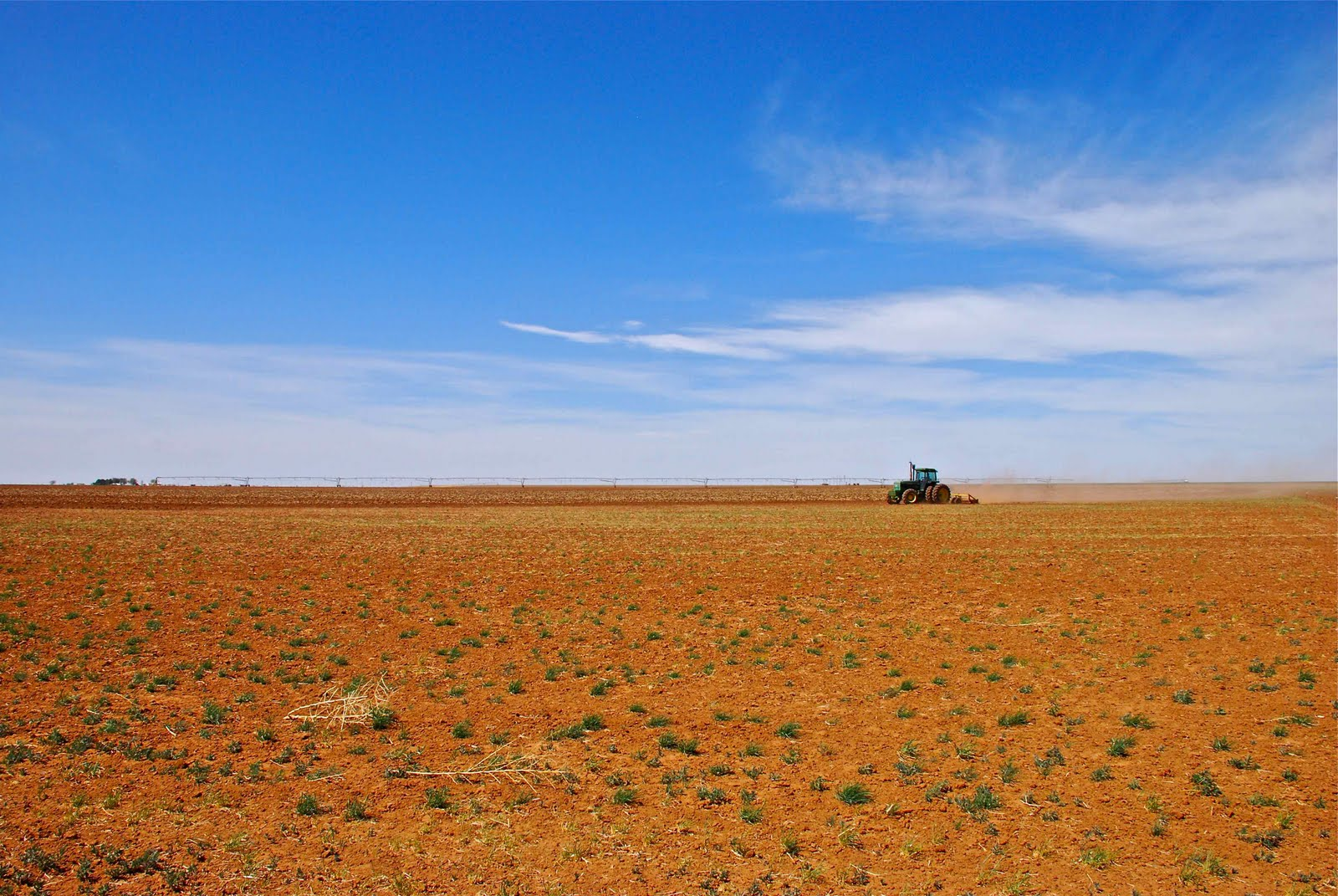 A persistent drought plagues the Llano Estacado. Just after midday I set out for the open plains. I'm eager to assess the state of ranching and agriculture on the tablelands Northwest of our town. Disheartening images of an immense, tinder-dry cattle range set the tone for my excursion.Read More