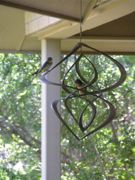 Animal Behaviors: Birds - Sibley Nature Center