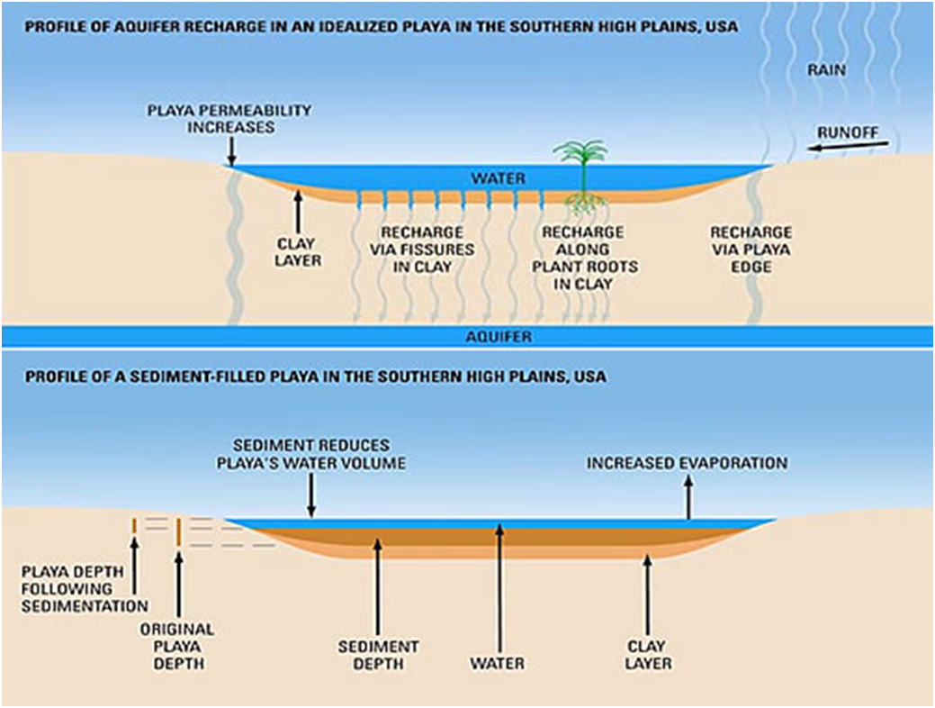 Figure 2. Structure of a Playa. Source: http://www.pljv.org/playas/recharge